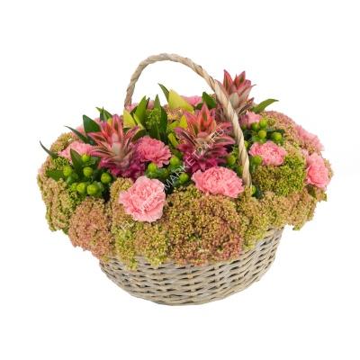 Цветы хризантемы купить янгеля, цветы оптом в новосибирске
